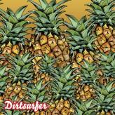 Them Pineapples mudguard