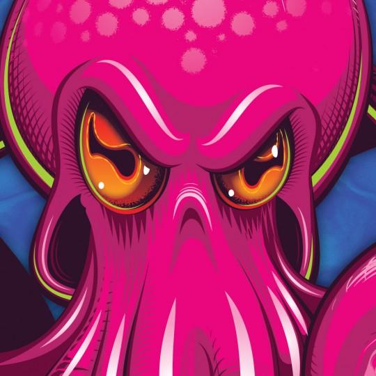 Octopus Mudguard (Pink on Blue)