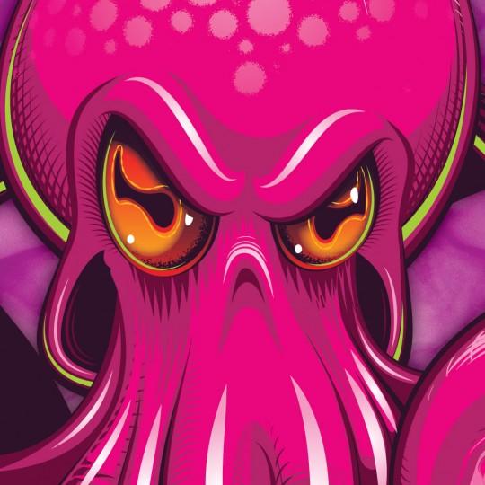 Octopus Mudguard (Pink on Pink)